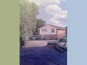 EasyRoommate UK - 3 rooms for rent £440 for each, Charlton Kings - £440 pcm