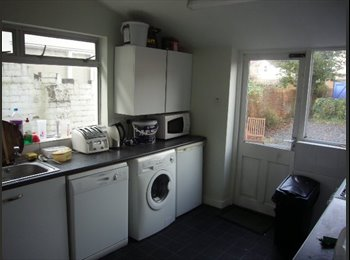 EasyRoommate UK - Prime location, professional house share, Cardiff - £360 pcm