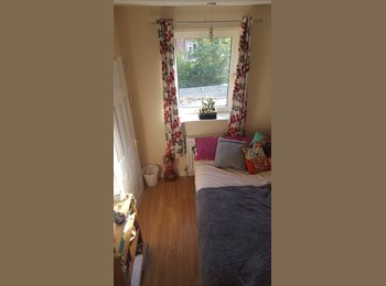 EasyRoommate UK - Double room with en suit to rent in house share 10 minutes from UEA, Norwich, Norwich - £411 pcm