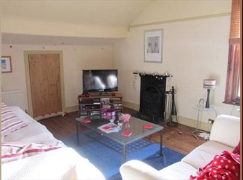 EasyRoommate UK - Spacious Double Room in 2 Bed Attic Flat Chester, Chester - £388 pcm