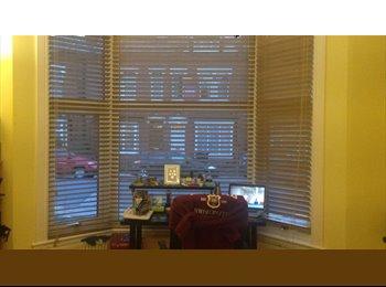 EasyRoommate UK - Nice international houseshare next to UOB, Birmingham - £382 pcm