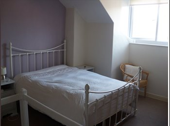 EasyRoommate UK - Large, Double Room to Rent, Sheffield - £380 pcm