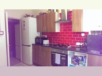 single room available in 240 Cardigan Road