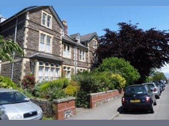 EasyRoommate UK - Double room in a 4 bed student flat in Cotham, Bristol - £445 pcm