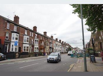 EasyRoommate UK - House for student on Abbeydale Road, เชฟฟิลด์ - £368 pcm