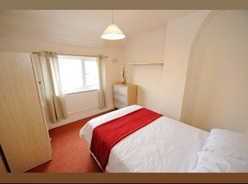 **PROFESSIONAL SHARE** Spacious, furnished double room