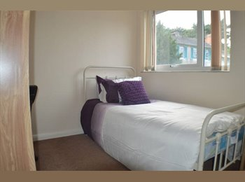 EasyRoommate UK - CHEAP SINGLE ROOM **FIVE LAMPS**, Derby - £275 pcm