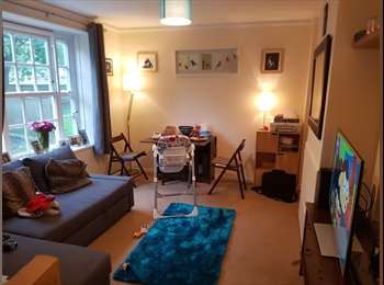 EasyRoommate UK - single or double room available, London - £430 pcm