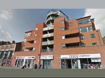 EasyRoommate UK - 2 Bedroom Student Flat Located Across From NTU, Nottingham - £459 pcm