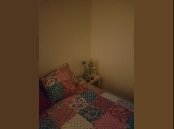 EasyRoommate UK - Room to let in Ireton Street, Belfast - £250 pcm