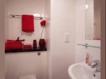 EasyRoommate UK - Lovely studio flat available, Birmingham - £744 pcm