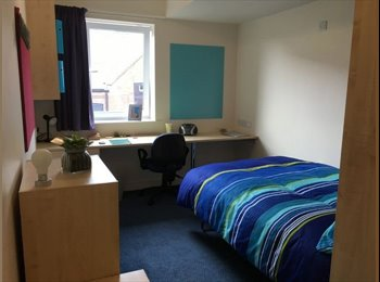 Knoll Court En Suite Room - Newcastle