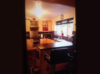 EasyRoommate UK - Single room in lovely home(double bed on request), Chesterfield - £320 pcm