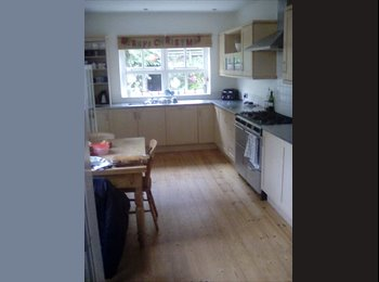 EasyRoommate UK - Double RMS, Central, N/S Female Pref. , Exeter - £420 pcm