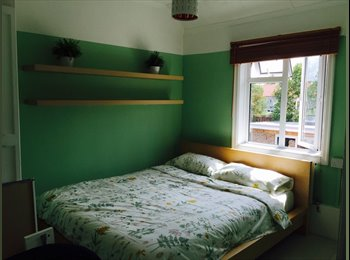 charming double to rent in Eltham £520 all bill included
