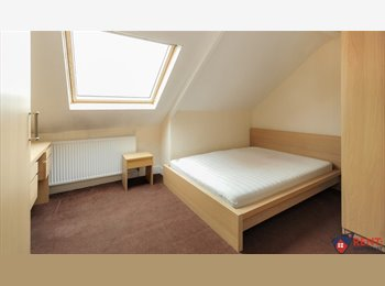 EasyRoommate UK - Stunning Room - Excellent Bus Links, Gateshead - £297 pcm