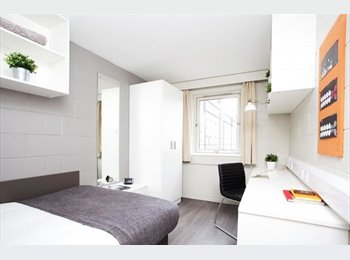 Room Available At Spring Gardens
