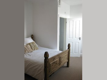 Fantastic double en-suite room to rent in professional...