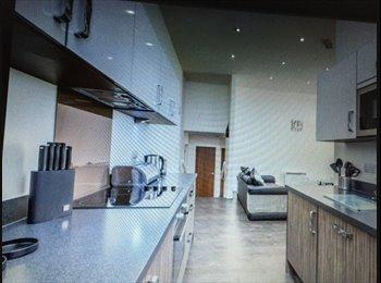 stunning luxury apartment  city centre location  female ...