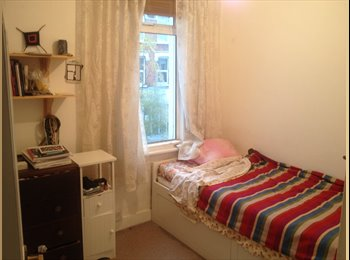 Small and cosy single room in a friendly flatshare