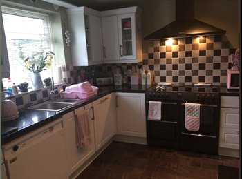Beautiful, large, furnished double room to rent