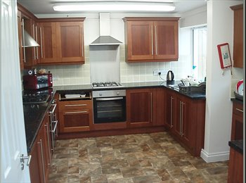 1 DOUBLE BEDROOM AVAILABLE 22 NOVEMBER 2016 IN LOVELY HOUSE
