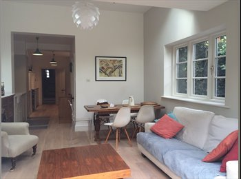 Great location and renovated house share