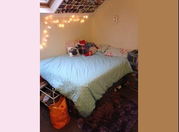 Room Available in Ideal Student Location