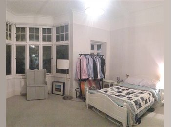 Large Double room in amazing flat in Clapham