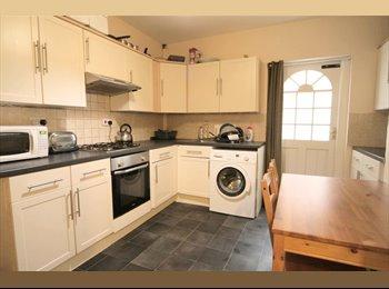 EasyRoommate UK - *Double Room*Prof Share*Central Location*, Cheltenham - £450 pcm