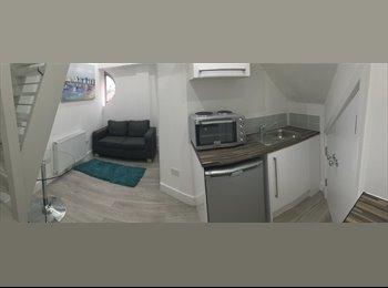Modern Spilt-Level Studio Flat to Rent