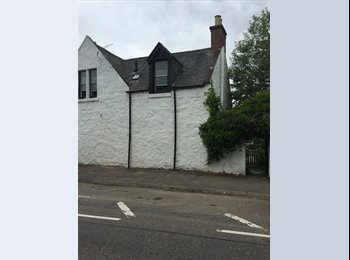 Room to Rent in city centre