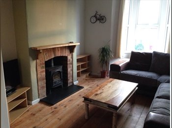 EasyRoommate UK - 2 bedroom house to rent, Exeter - £895 pcm