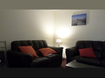 Superb Double En-suite Room close to QEH and UOB