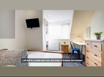 Student cribs Room to rent, reduced to 95!