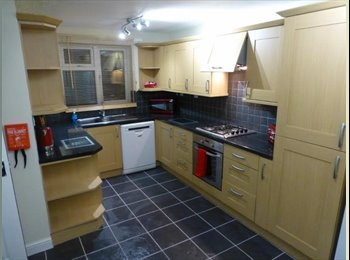 Single & Double rooms - Redditch - from £369pw