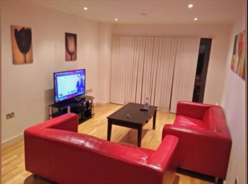 Professional 2 Bed Flat share - The Reach!
