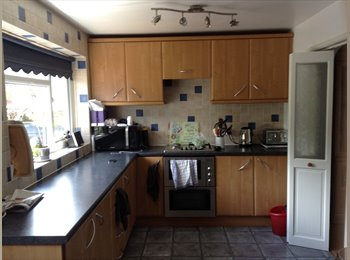 EasyRoommate UK - Double furnished room in cosy home, Fishponds - £400 pcm