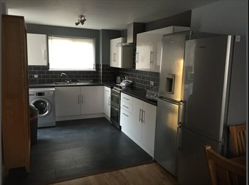 Professional House share, in newly renovated house.