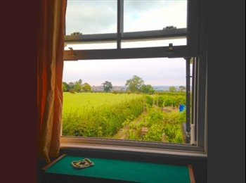 EasyRoommate UK - Cosy country cottage, New Romney - £475 pcm
