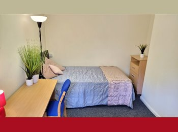 EasyRoommate UK - 3 Bed flat in Prime Student Location, Shefield, Broomhall - £325 pcm