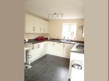 Double room in a brand new, large 4 bedroom house