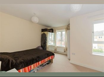 Double size bedrooms available to rent