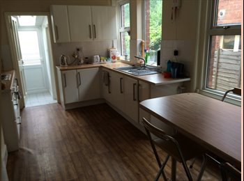 EasyRoommate UK - Recently refurbished house 4 bed 2 bath house, Exeter - £480 pcm