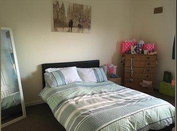 EasyRoommate UK - Spacious Double Bedroom to Let near Aberdeen Uni, Aberdeen - £362 pcm