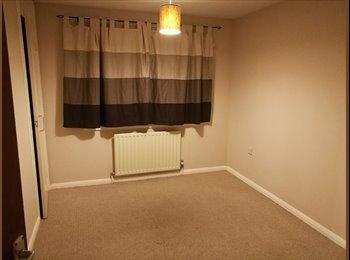 EasyRoommate UK - Room to let in 3 bedroom house, Winklebury, Basingstoke , Basingstoke - £400 pcm