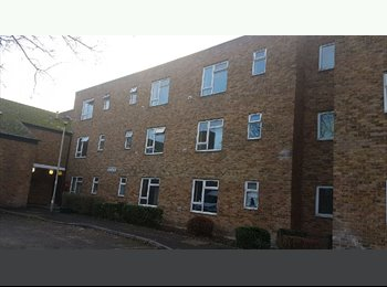 1st month half price, 1 bed studio flat Isleworth