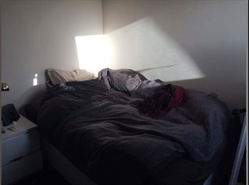 Spare room in student house