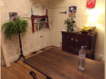 Unfurnished Double Room on leafy Exeter terrace