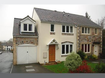 Double room for Rent in Banwell.